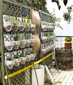 he vertical crops are an excellent solution for planting in a small space with little substrate. We ourselves could, without much difficulty, create us our own simple vertical garden recycling bottles or plastic bottles, as we see in the images. An idea very interesting and cheap to plant, for example, in small urban gardens or patios.