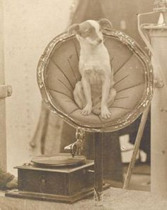 'Nipper' the dog with an HMV phonograph