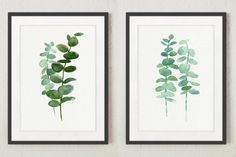 Eucalyptus Print set 2 Botanical Art Prints by ColorWatercolor