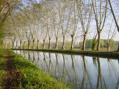 Réflets en printemps, Fourques sur Garonne