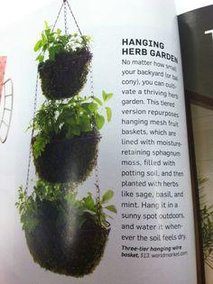 Small spaces herb garden!/