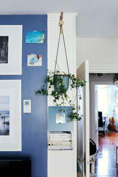 Macetero plantas colgantes interior decoración