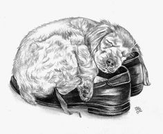 sleeping in my shoes by ~winstonscreator on deviantART