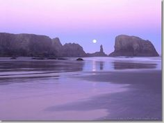 Moonset over Coquille Point Oregon Islands, Oregon.
