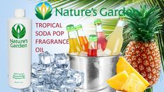 Tropical Soda Pop Fragrance Oil- Natures Garden #fragranceoil #crafts #diy