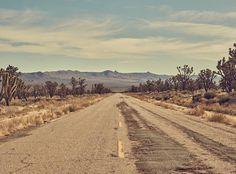 "electricwest: "" Joshua Tree dreams ⚡️ photo by @johanstjerneus #electricwest #joshuatree #roadtrip #california #mohave """