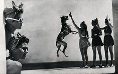 French Sampler: Fabulous Photographer Toni Frissell