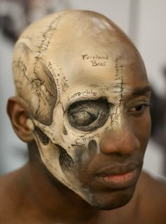 Medical illustration of the human skull painted directly onto a head by makeup artist, Lisa Berczel, for the International Make-Up Artist Trade Show in Los Angeles