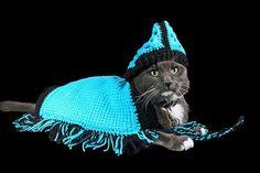 Pet Sweater Pet Hoodie  Pet Jacket Pet Poncho by ADKArtsBoutique