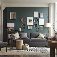 Dark teal colored accent wall in living room, with grey couch  neutral accents