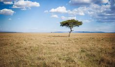 Inspirations for luxurios, adventurous and responsible travel - this time - Kenya