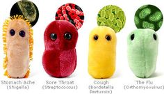 Giant Microbes Catch them while you can E Coli Fat Cell MRSA Red Blood Cell Sore Throat Stomach Ache Swine Flu White Blood Cell soooo funny! Plush Microbes, Giant Microbes, Sore Throat And Cough, Giant Plush, Tech Gifts, Child Life, Princesas Disney, Plushies, Nerdy