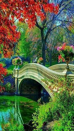 Green Park In Switzerland - Beautiful places. Best places in the world. Beautiful World, Beautiful Places, Beautiful Pictures, Amazing Places, Beautiful Scenery, Beautiful Park, Stunning View, Places Around The World, Around The Worlds