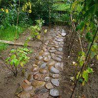 a small stone road in the garden photo 3_asmallstoneroad.jpg