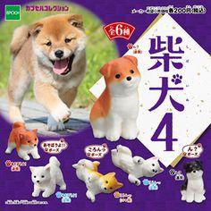 柴犬4 / エポック