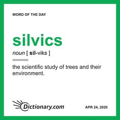 Word of the Day - silvics Weird Words, More Words, New Words, Vocabulary Words, English Vocabulary, Vocabulary Building, Science Words, Words That Describe Me, Writing Words