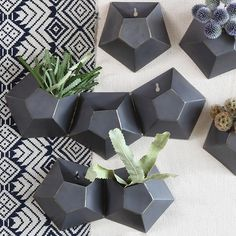 Hexagonal Wall Planter