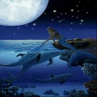 Fantasy Mermaids with dolphins Mermaid Gifs, Mermaid Images, Mermaid Pictures, Mermaid Art, Real Mermaids, Fantasy Mermaids, Mermaids And Mermen, Fantasy Creatures, Mythical Creatures