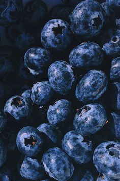 Mar 29 2020 200 Colorful Fruit Pictures Pexels Free Stock Photos Closeup Photography Blueberry Fruits This image Easy Blueberry Pie, Blueberry Pie Recipes, Blueberry Fruit, Photo Fruit, Fruit Picture, Fruit Photography, Close Up Photography, Photography Photos, Vegan Power Girl