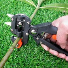 Professional Nursery Fruit Tree Grafting Cut Tool Pruner Garden Equipment Fast