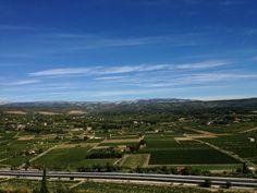 Great view over the #Bandol vineyards with the Sainte Baume Mountain on the horizon. #tourismpaca #tourismepaca #Provence #Var #SteBaume #France