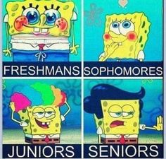 I didn't look like that when I was a freshmen! And I certainly don't look like Sophmore spongebob now! And I really hope I don't look like Junior spongebob next school year! Senior spongebob looks cool though. Funny Shit, The Funny, Funny Jokes, Funny Stuff, Funny Things, Random Stuff, Random Things, Funny Logic, Stupid Jokes