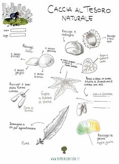 Outdoor Summer Activities, Autumn Activities For Kids, Spring Activities, Infant Activities, Reggio Children, In Natura, Outdoor Education, Cooperative Learning, Farm Birthday