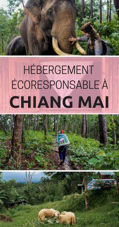 Dans le nord de la Thaïlande, c'est la première compagnie de trekking autogérée par les femmes de la minorité ethnique Karen! Mon séjour à Chiang Mai n'aurait pas été le même sans elles. #thailande #girlpower #voyage #voyagesolo #chiangmai