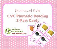 Montessori Phonetic Reading 3-Part Cards Flash Freebie