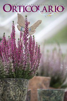 L'intreccio tra le ceramiche di Monica Bispo, le piante di Massimiliano Bustaffa e le trasparenze della serra firmata Arcadia... Fotografia di Dario Fusaro. Scattata durante e per Orticolario 2015