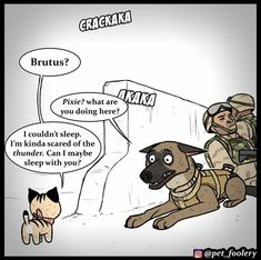 New Pixie And Brutus Comic Hits Hard In The Feels - World's largest collection of cat memes and other animals Funny Animal Comics, Dog Comics, Animal Jokes, Funny Animal Memes, Cute Funny Animals, Funny Comics, Cute Funny Cartoons, Crazy Funny Memes, Funny Kids
