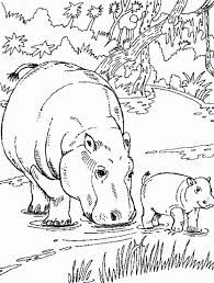 Hippo And Her Calf Color Page Animal Coloring Pages For Kids Thousands Of Free Printable