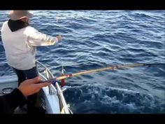 12.10.12 Humboldt Squid & Dungeness Crab #Fishing #Monterey