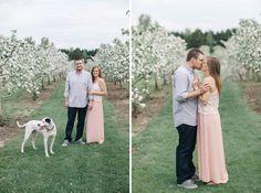 Aamodts Apple Farm engagement photos!