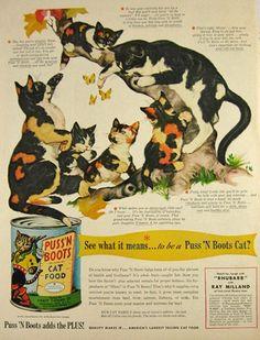 Vintage Puss 'N Boots Cat Food Ad - 1951 | Vintage Ads & Illustrations