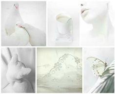 White Colour, Color, Colors
