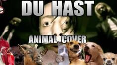 Rammstein- du hast animal cover