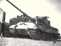 TigerII, Ostfront.1944