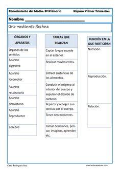Indice de contenido1 Fichas Conocimiento del Medio en nuestros Recursos Educativos1.1 Fichas Conocimiento del Medio para Tercero de Primaria1.1.1 Ejercicios Colegio Ideas, Homework, Biology, Montessori, Spanish, Science, Education, Nature, Middle