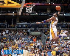 d900cdc4215815 42 Best 16 and Counting....Stop Hating..Purple and Gold 4Life images ...