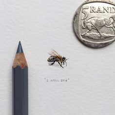 365 Postcards For Ants: Illustrator Creates One Mini Painting Per Day For A Year - Bee