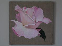 rose grans modèle (50x50)