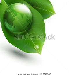 environmental element with transparent green ball-globe and leaves on a white background - stock photo