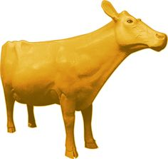 Butter Cow: The golden icon of the Iowa State Fair since 1911, each year the cow is sculpted from some 500lbs of unsalted butter supported by a wood and wire framework. via buttercow2012 #Butter_Cow