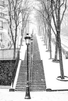 Snowy morning in Montmartre Black and White Photograph by Rebecca Plotnick