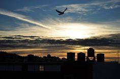 """Antonio Garamendi - Zacatecas Amigos y contactos les pido den """"me gusta"""" desde el Pinterest a esta foto, con la cual concurso por un viaje por volaris."""