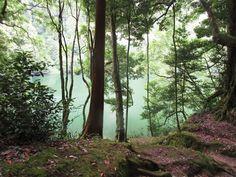 Lagoa do Congro - São Miguel - Açores #azore #nature #açores #sãomiguel #lagoadocongro