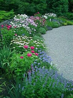 360 best perennial gardens plants images beautiful gardens rh pinterest com