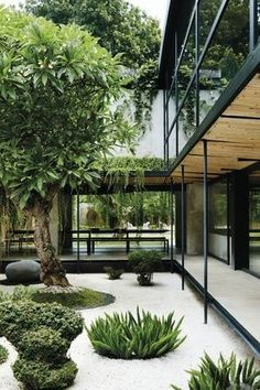 Indoor Gardens For Your Home - Winter garden 3 Courtyard Design, Courtyard House, Villa Design, Indoor Courtyard, Dream Home Design, Modern House Design, Design Cour, Interior Garden, Japanese House