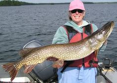 When and Where to Find Northern Pike